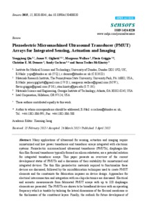 Piezoelectric Micromachined Ultrasound Transducer (PMUT) Arrays for